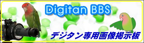 デジタン専用画像掲示板